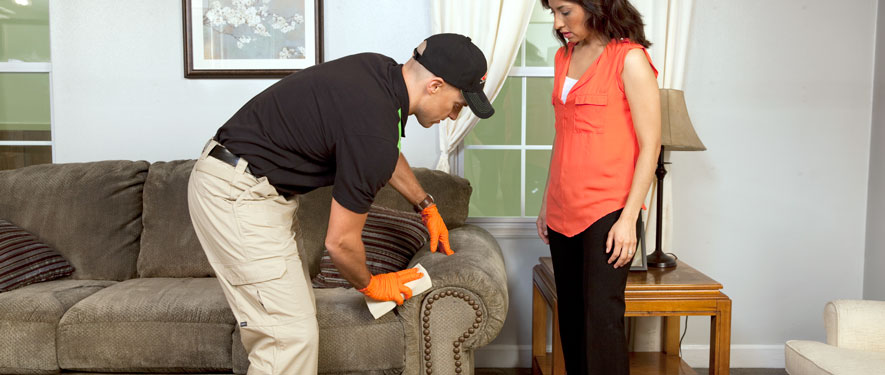 San Francisco, CA carpet upholstery cleaning